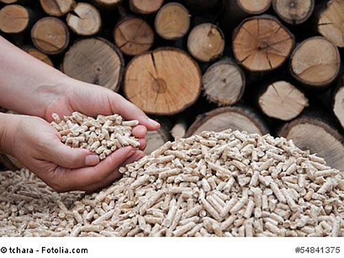Giftige Gase aus Holzpellets