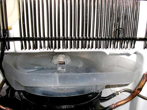 Rückseite Eines Kühlschranks Mit Gereinigter Auffangschale